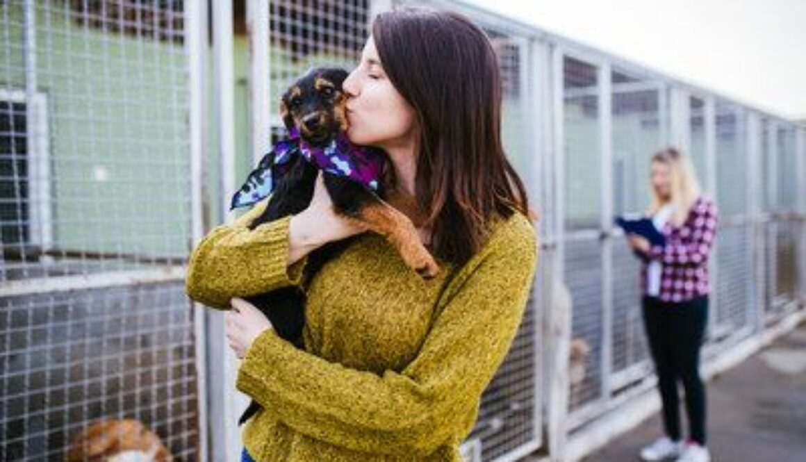 PET RELEAF Donates over $150,000 to At-risk Dogs Across the Country